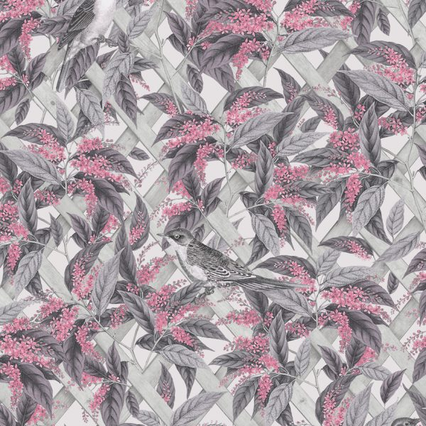 90332-brassica-pink-grey-product
