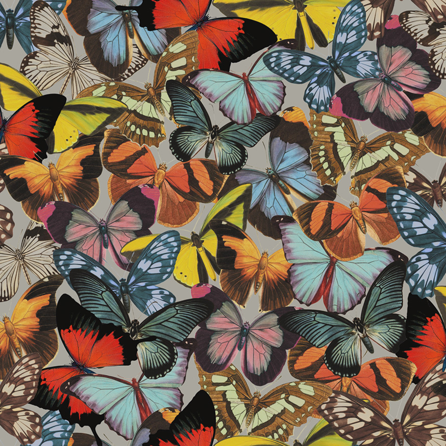 98220-fusion-butterfly-grove-product