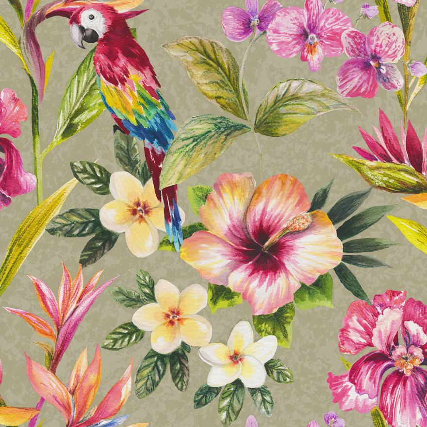 98431-paradise-bird-of-paradise-product