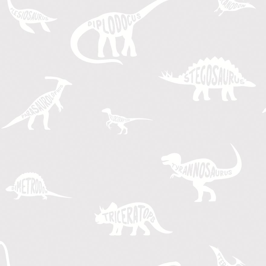 90900 Dino Dictionary Grey